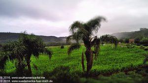 Gramado - Canela (DE) (29)