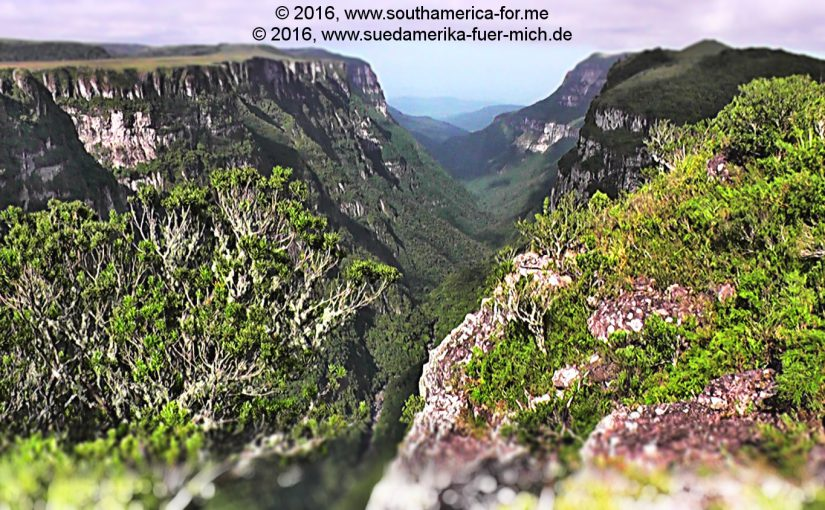 Video zu Rio Grande do Sul und Serra Gaúcha