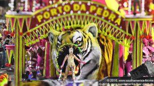 Rio - Samba (13)